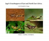 Jago's Grasshoppers of East and North East Africa, Volume 3