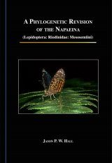 A Phylogenetic Revision of the Napaeina (Lepidoptera: Riodinidae: Mesosemiini)