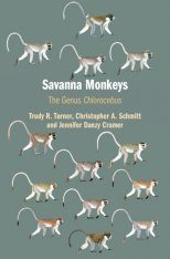Savanna Monkeys