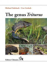 The Genus Triturus
