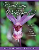 Wondering about Wildflowers?