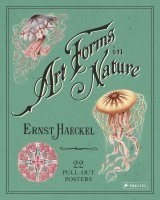Ernst Haeckel – Art Forms in Nature