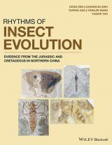 Rhythms of Insect Evolution