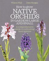 How to Grow Native Orchids in Gardens Large and Small