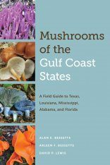 Mushrooms of the Gulf Coast States