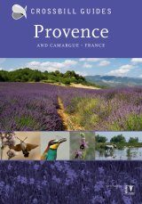 Crossbill Guide: Provence and Camargue, France