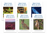 British Wildlife One-Year Subscription