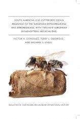 South American Leaf-Cutter Bees (Genus Megachile) of the Subgenera Rhyssomegachile and Zonomegachile, with Two New Subgenera (Hymenoptera, Megachilidae)