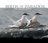 Birds of Paradox