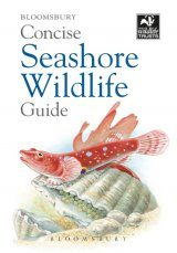 Bloomsbury Concise Seashore Wildlife Guide