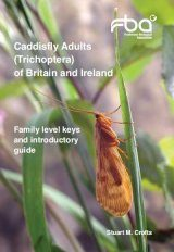 Caddisfly Adults (Trichoptera) of Britain and Ireland