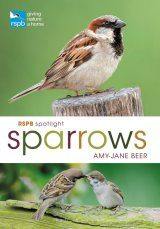 RSPB Spotlight Sparrows
