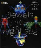 Jewels in the Night Sea [Japanese]