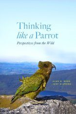 Thinking Like a Parrot