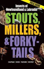 Stouts, Millers, and Forky-Tails