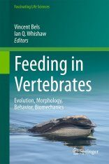 Feeding in Vertebrates
