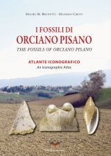 The Fossils of Orciano Pisano: An Iconographic Atlas / I Fossili do Orciano Pisano: Atlante Iconografico