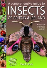 A Comprehensive Guide to Insects of Britain & Ireland