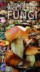 A Guide to Finding Woodland Fungi in Berks, Bucks & Oxon