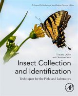 Insect Collection and Identification