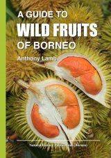 A Guide to Wild Fruits of Borneo