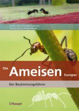 Die Ameisen Europas [Ants of Britain and Europe]