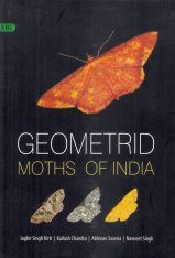 Geometrid Moths of India