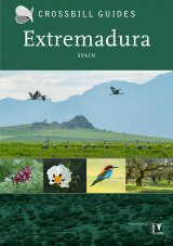 Crossbill Guide: Extremadura, Spain