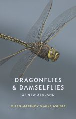 Dragonflies & Damselflies of New Zealand