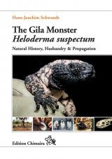 The Gila Monster Heloderma suspectum