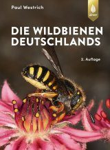 Die Wildbienen Deutschlands [The Wild Bees of Germany]