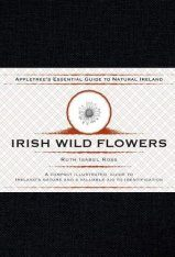 Irish Wild Flowers