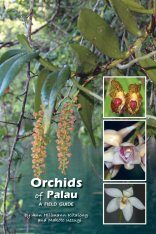 Orchids of Palau
