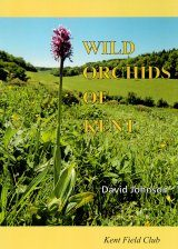 Wild Orchids of Kent