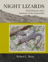 Night Lizards