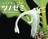 Fushigina Iki Mo No Tsunozemi [The Mysterious Treehopper]