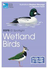 RSPB ID Spotlight: Wetland Birds