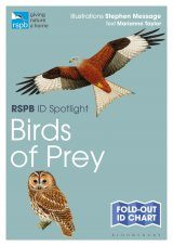RSPB ID Spotlight: British Birds of Prey