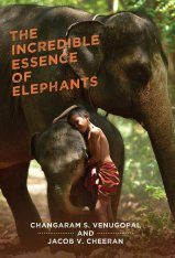 The Incredible Essence of Elephants