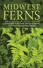 Midwest Ferns