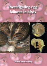 Investigating Egg Failures in Birds