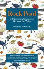 Rock Pool – Extraordinary Encounters Between the Tides