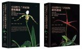 Atlas of Native Orchids in China (2-Volume Set) [Chinese]