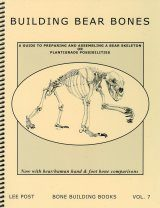 Bone Building Books, Volume 7: Building Bear Bones