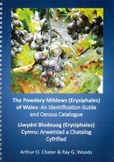 The Powdery Mildews (Erysiphales) of Wales