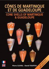 Cone Shells of Martinique & Guadeloupe / Cônes de Martinique et de Guadeloupe