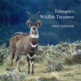 Ethiopia's Wildlife Treasures
