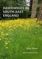 Hawkweeds of South-East England