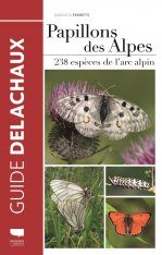 Papillons des Alpes: 238 Espèces de l'Arc Alpin [Butterfles of the Alps: 238 Species from the Alpine Arc]
