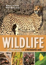 Wildlife of Namibia
